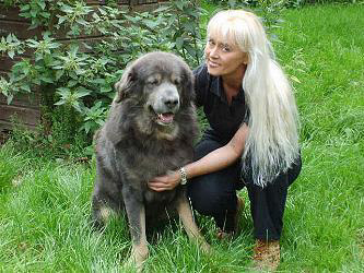 Do Khyi, Tibetan Mastiff Khan